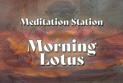 Meditation Station | Morning Lotus - showing an image of the buddha bathed in morning light and the bloom of a purple lotus