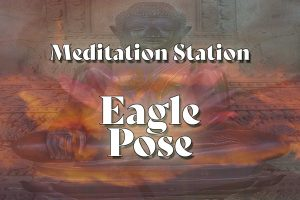 Meditation Station   Eagle Pose - showing an image of the buddha bathed in morning light and the bloom of a purple lotus