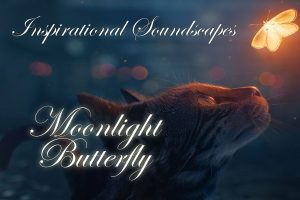 Inspirational Soundscapes   Moonlight Butterfly   Image of a cat looking at a glowing butterfly