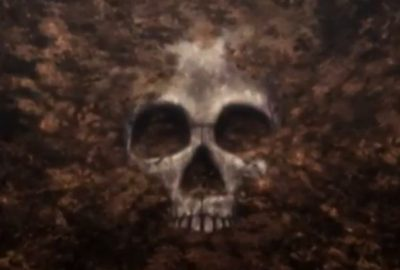 Image of a skull from the Beautiful Bones trailer