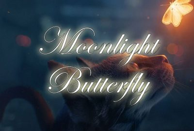 Moonlight Butterfly showing a cat looking a a glowing butterfly